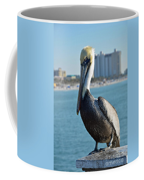 Pelican Coffee Mug featuring the photograph Brown Pelican by Robert Meanor