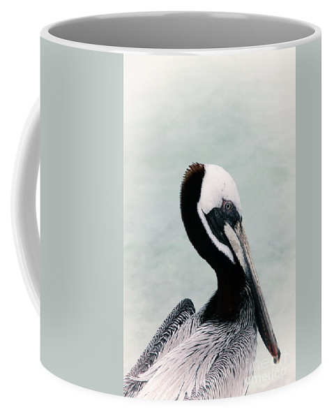 Bird Coffee Mug featuring the photograph Brown Pelican by Teresa Zieba