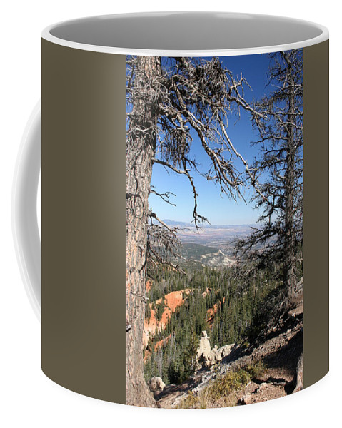 Trees Coffee Mug featuring the photograph Bryce Canyon Overlook With Dead Trees by Christiane Schulze Art And Photography