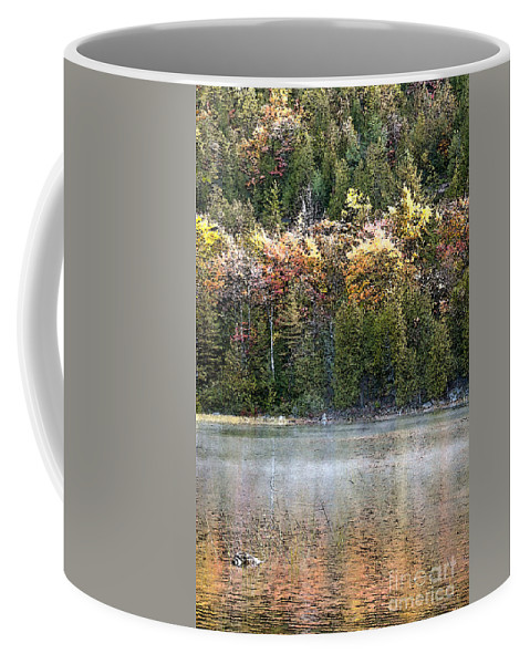 Bubble Pond Coffee Mug featuring the photograph Bubble Pond Acadia National Park by Glenn Gordon