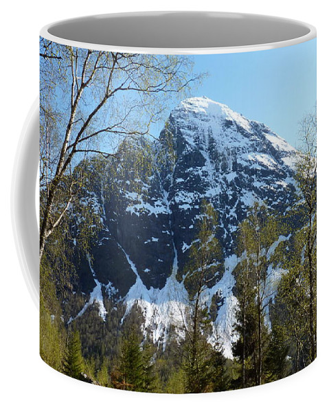 Coffee Mug featuring the photograph Buds And Glaciers by Katerina Naumenko