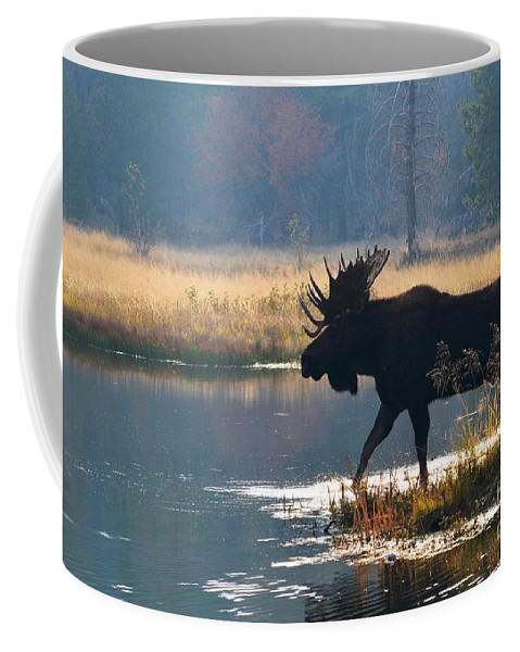 Moose Coffee Mug featuring the photograph Bullwinkle by Deanna Cagle