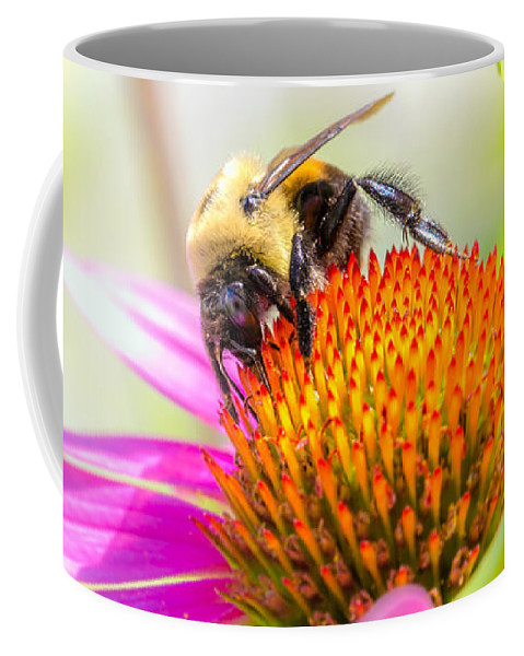 Bees Coffee Mug featuring the photograph Bumble Bee by Bob Orsillo