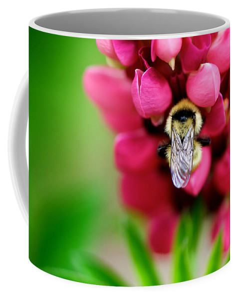 Bokeh Coffee Mug featuring the photograph Bumble Snuggle by Lisa Knechtel