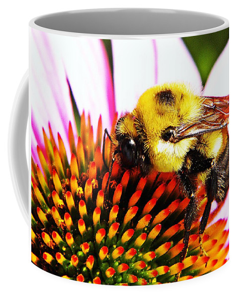 Bee Coffee Mug featuring the photograph Bumblebee On Echinacea by Chris Berry