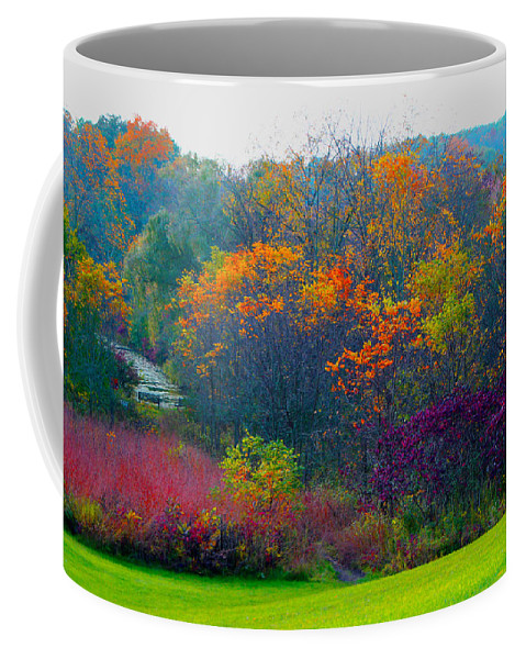 Nature Coffee Mug featuring the photograph Bursting With Color 1 by Debbie Nobile