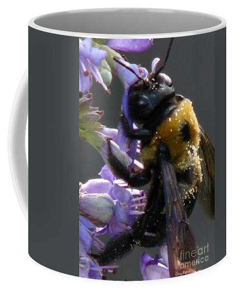 Patzer Coffee Mug featuring the photograph Busy Bee by Greg Patzer