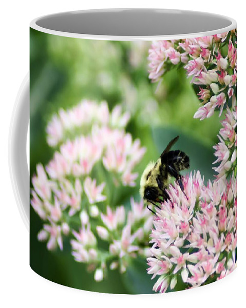 Busy Bumble Bee Coffee Mug featuring the photograph Busy Bumble Bee by Cynthia Woods