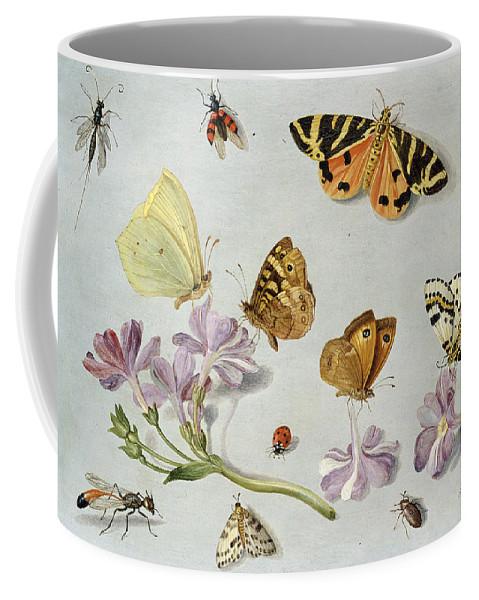Still Life Coffee Mug featuring the painting Butterflies by Jan Van Kessel