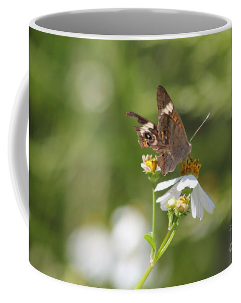 Butterfly Coffee Mug featuring the photograph Butterfly 2 by Michelle Powell