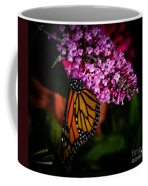 Butterfly Coffee Mug featuring the photograph Butterfly 5 by Ronald Grogan