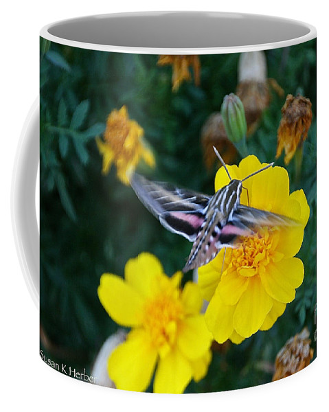 Outdoors Coffee Mug featuring the photograph Butterfly Moth by Susan Herber