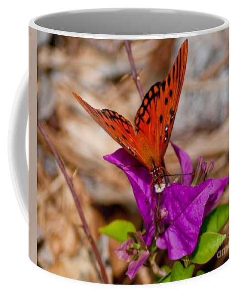 Butterfly Coffee Mug featuring the photograph Butterfly On Bouganvilla by Stephen Whalen
