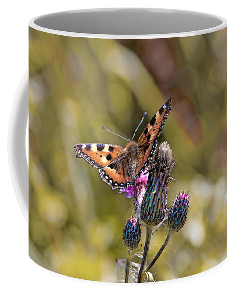 Butterfly Coffee Mug featuring the photograph Butterfly On Tistle Sep by Leif Sohlman