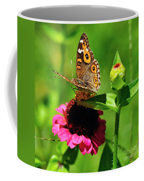 Photography Coffee Mug featuring the photograph Butterfly On Zinnia Flower 2 by Kaye Menner
