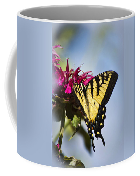 Butterfly Coffee Mug featuring the photograph Butterfly Out Of The Blue - Blue Butterfly Art by Christina Rollo