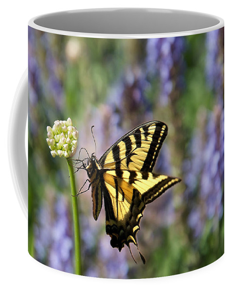 Lisa Knechtel Coffee Mug featuring the photograph Butterfly Thoughts by Lisa Knechtel