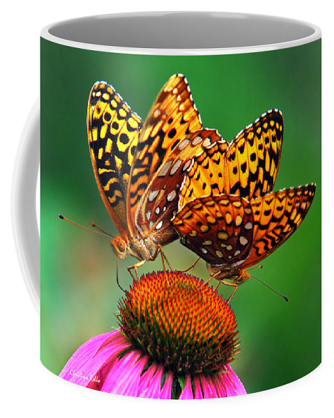 Butterflies Coffee Mug featuring the photograph Butterfly Twins by Christina Rollo
