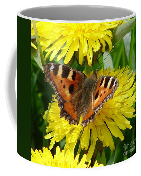 Butterfly Coffee Mug featuring the photograph Butterfly Yellow by Carol Lynch