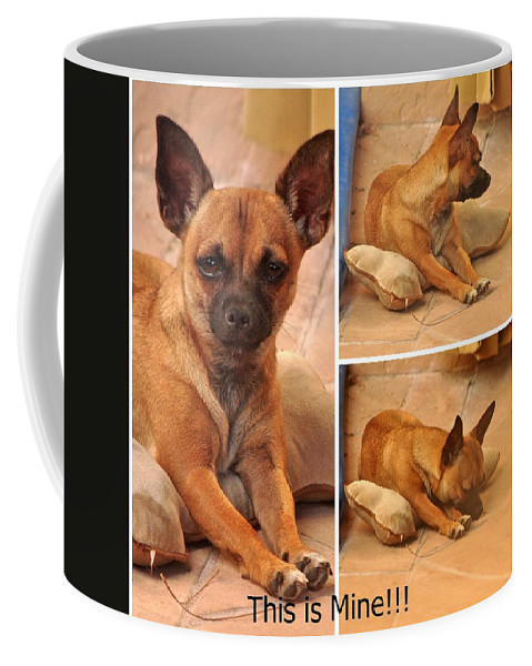 Animal Coffee Mug featuring the photograph Button With Pillowbone by Jay Milo