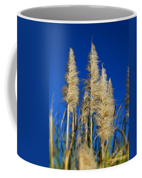 Indian Feather Bush Coffee Mug featuring the photograph By The Sea By Diana Sainz by Diana Sainz