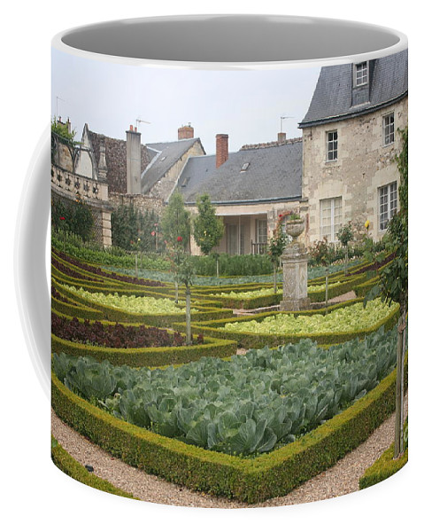 Cabbage Coffee Mug featuring the photograph Cabbage Garden Chateau Villandry by Christiane Schulze Art And Photography