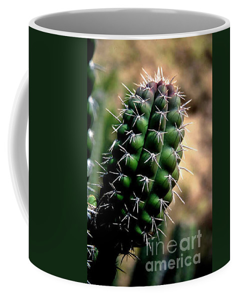 Sahuaro Coffee Mug featuring the photograph Cactus Arm by Kathy McClure