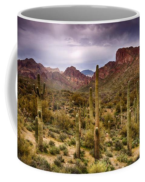 Arizona Coffee Mug featuring the photograph Cactus Canyon by Saija Lehtonen