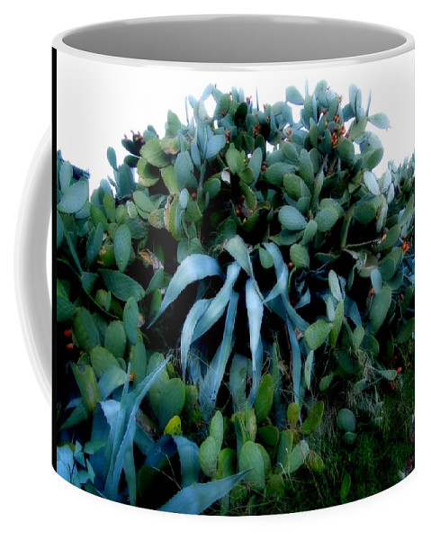 Colette Coffee Mug featuring the photograph Cactus Family Almeria Region Spain 2013 January by Colette V Hera Guggenheim