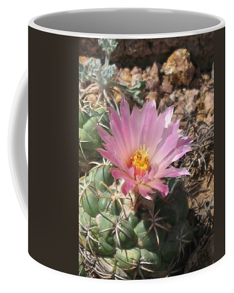 Pink Cactus Flower Coffee Mug featuring the photograph Cactus Flower by Christiane Schulze Art And Photography