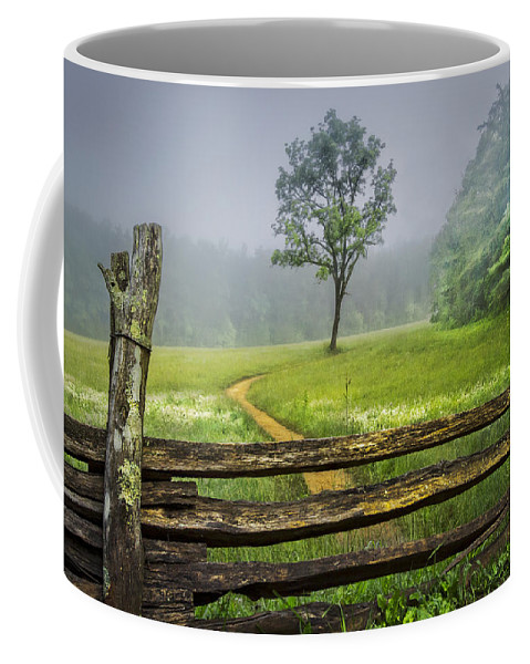 Appalachia Coffee Mug featuring the photograph Cades Cove Misty Tree by Debra and Dave Vanderlaan
