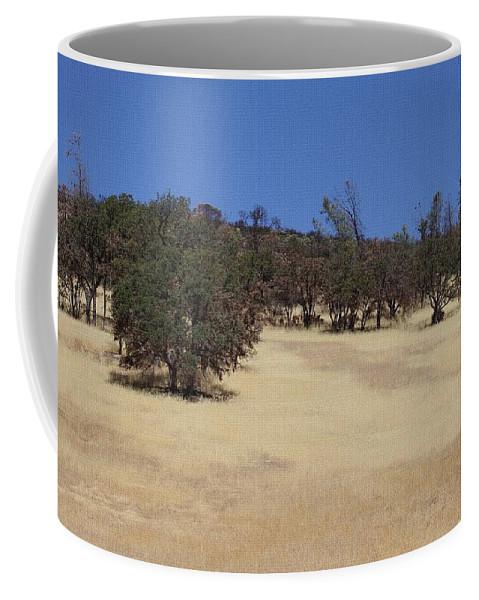 California Grass And Oak Trees Coffee Mug featuring the photograph California Grass And Oak Trees by Tom Janca