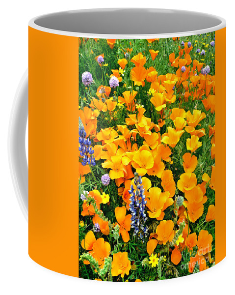North America Coffee Mug featuring the photograph California Poppies And Betham Lupines Southern California by Dave Welling