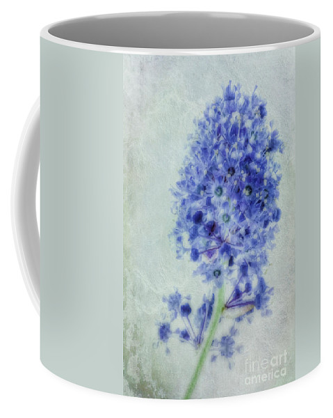 Californian Lilac Coffee Mug featuring the photograph Californian Blue by John Edwards