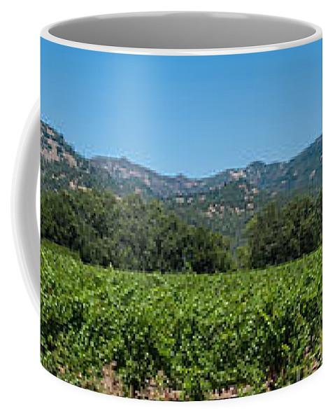 Calistoga Coffee Mug featuring the photograph Calistoga Valley 2 by Richard J Cassato