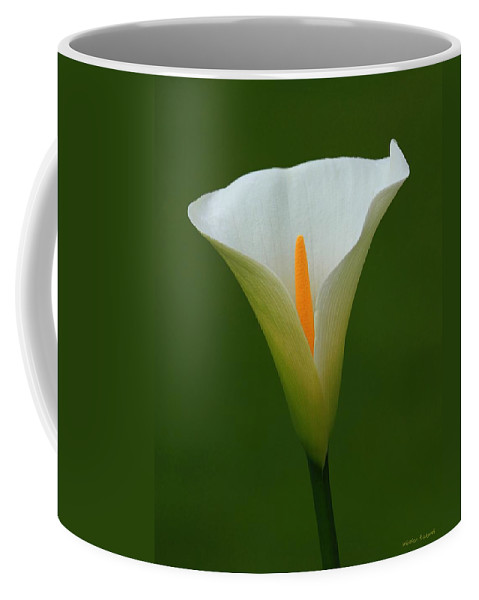 Flower Coffee Mug featuring the photograph Calla Lily II by Winston Rockwell