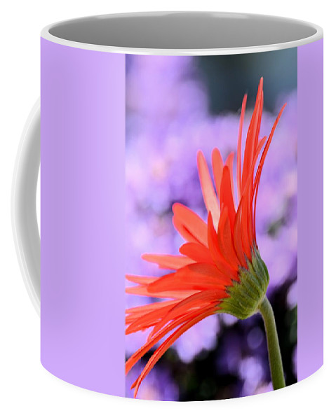 Calling On The Sun Coffee Mug featuring the photograph Calling On The Sun by Maria Urso