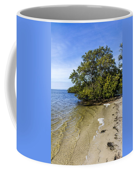 Mangrove Coffee Mug featuring the photograph Calm Waters On The Gulf by Marvin Spates