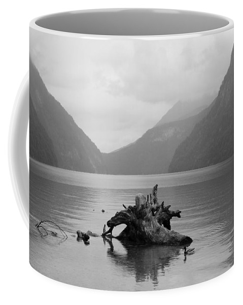 Tree Coffee Mug featuring the photograph Calmness Of Nature by Christiane Schulze Art And Photography