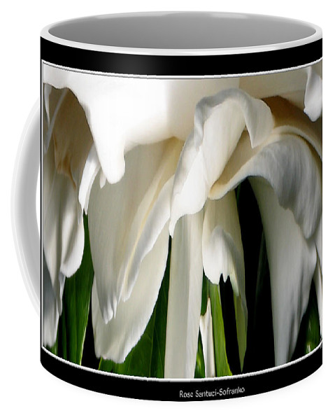 Camellia Coffee Mug featuring the photograph Camellia Abstract by Rose Santuci-Sofranko