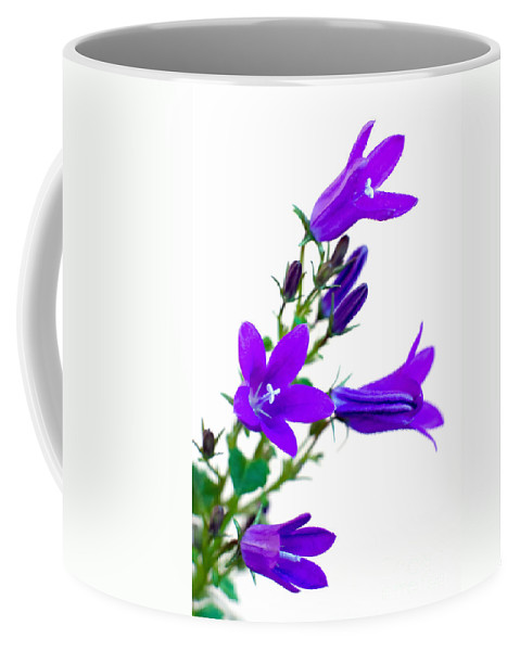 Campanula Coffee Mug featuring the photograph Campanula Flowers by Salvatore Chiariello