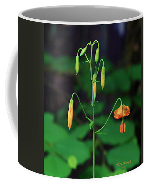 Nature Coffee Mug featuring the photograph Campground Flower by Jeanette C Landstrom