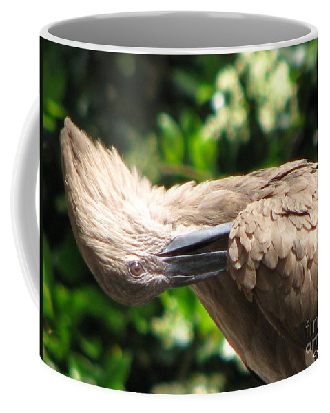 Patzer Coffee Mug featuring the photograph Can You Do This by Greg Patzer