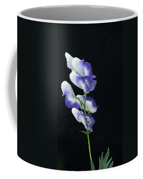 Alberta Coffee Mug featuring the photograph Canadian Monkshood by Douglas Barnett