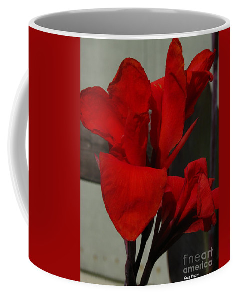 Patzer Coffee Mug featuring the photograph Canna by Greg Patzer