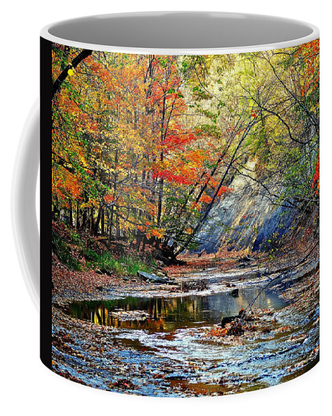 Colorful Coffee Mug featuring the photograph Canopy Of Color Iv by Frozen in Time Fine Art Photography
