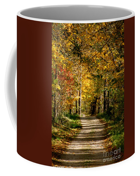 Horticulture Coffee Mug featuring the photograph Canopy by Susan Herber