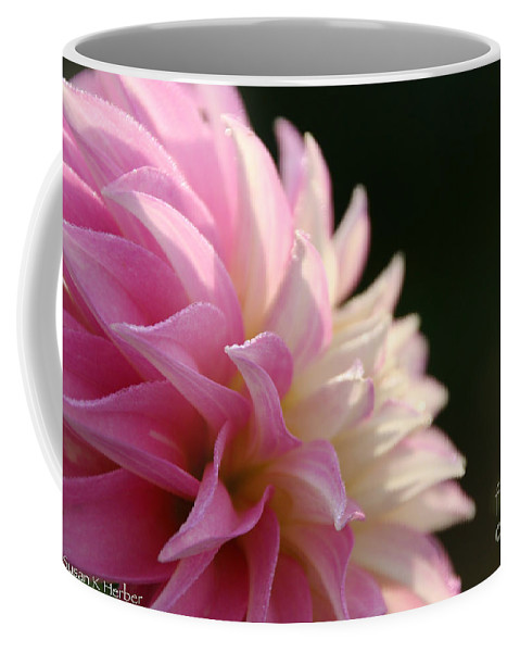 Flower Coffee Mug featuring the photograph Capturing The Sun by Susan Herber