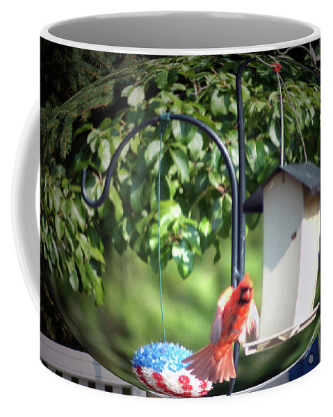 Animals Coffee Mug featuring the photograph Cardinal Tail Wide Landing Digital Art by Thomas Woolworth