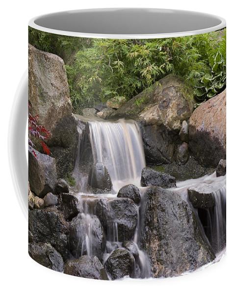 3scape Photos Coffee Mug featuring the photograph Cascade Waterfall by Adam Romanowicz